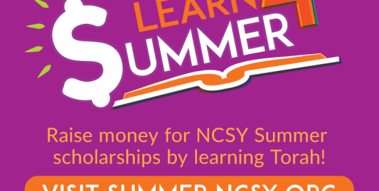 Learn 4 Summer Logo (Facebook Ad)