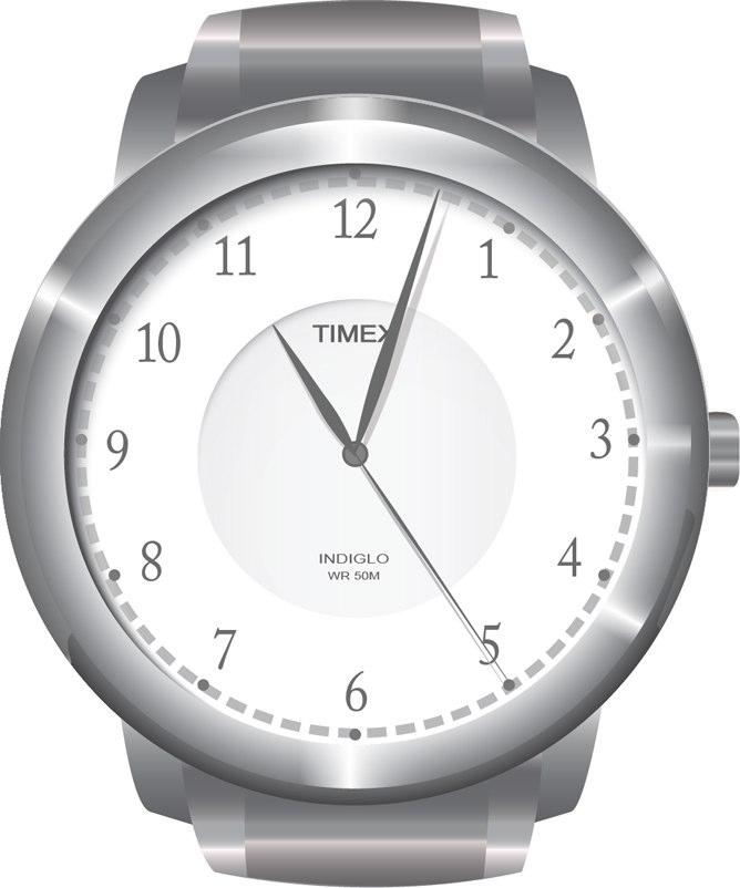 Timex Watch Illustration
