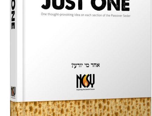 Just One Haggadah (Full Book Design)